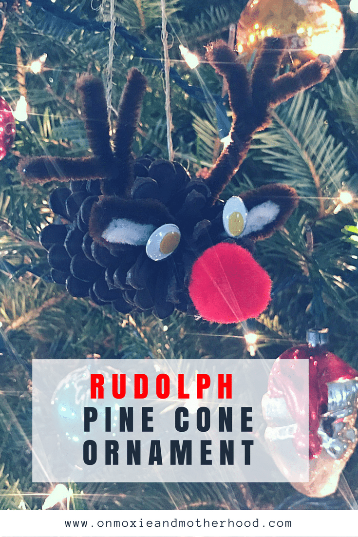 How to make a Rudolph Pine Cone Ornament