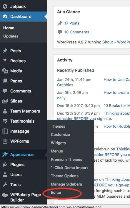 Add Code to head tag in WordPress