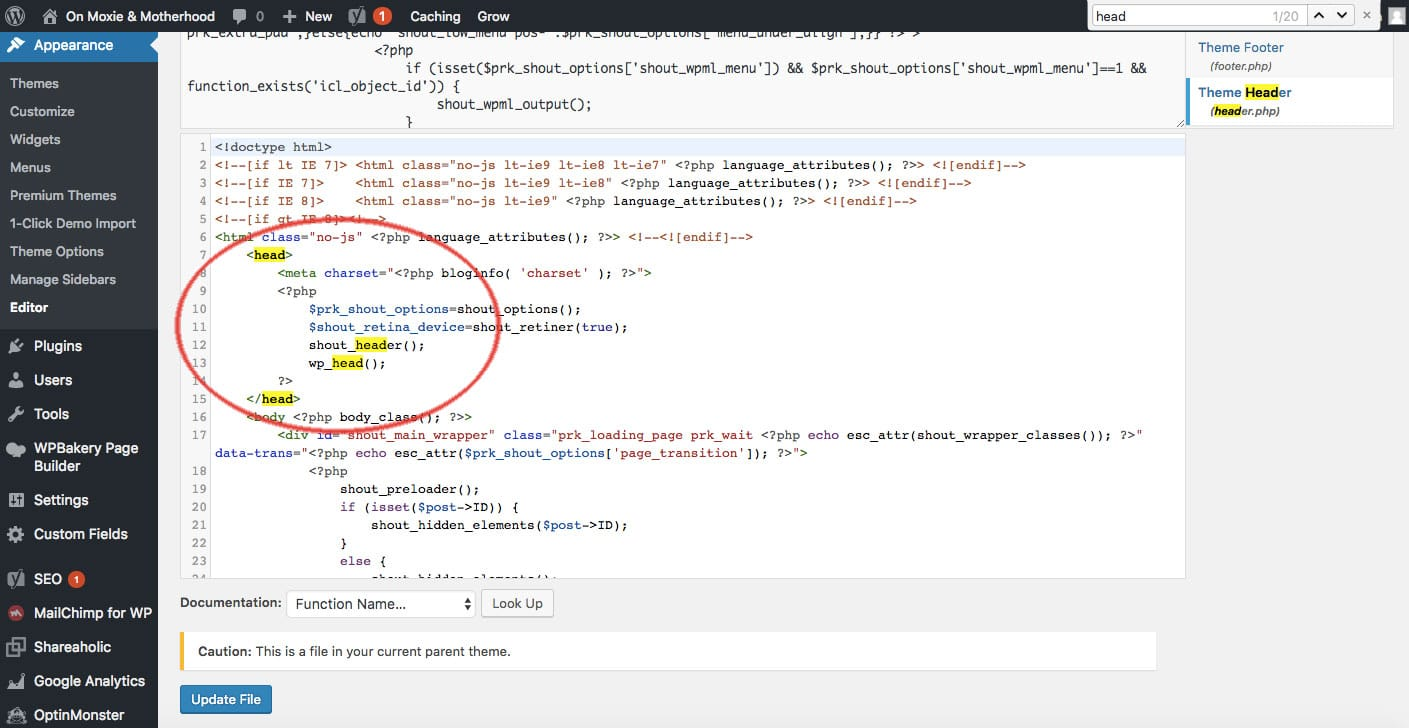 How to find the head tag in WordPress