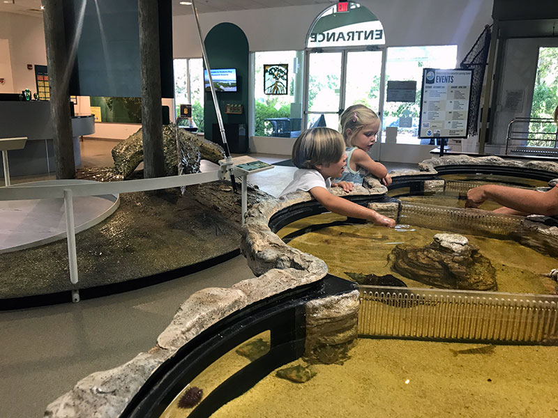 Touch tank naples
